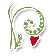 logo-pflanze